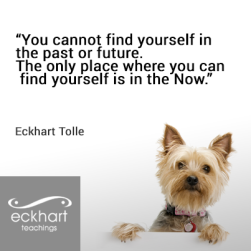 By Eckhart Tolle