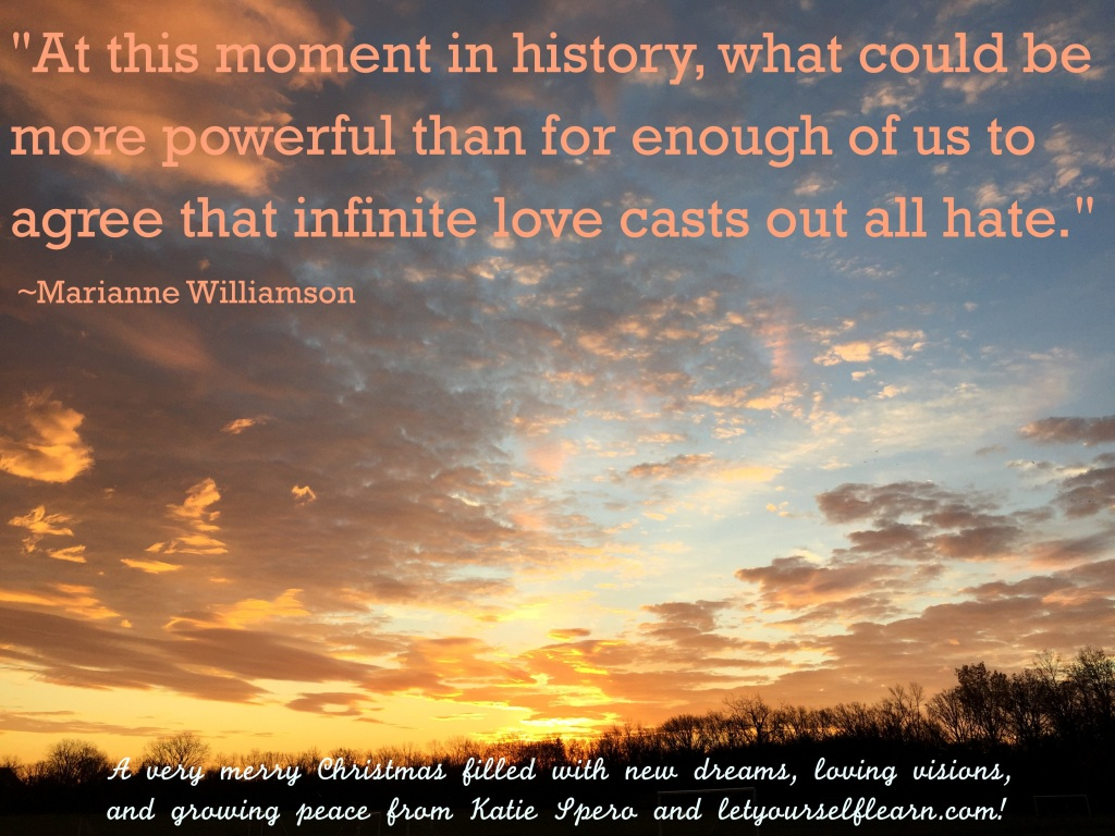 Marianne Williamson Love Quotes Marianne Williamson  Let Yourself Learn